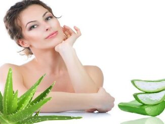 Benefits of Aloe Vera on Skin
